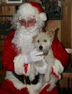 Mr. Pish and Santa