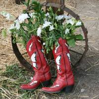 cowboy boots - by KS Brooks