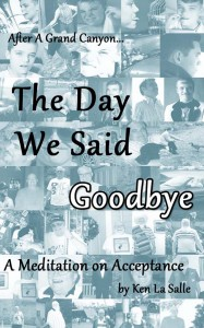 The Day We Said Goodbye Cover
