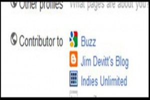 Contributor to Links in you Google+ Profile