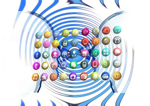 The role of search and social