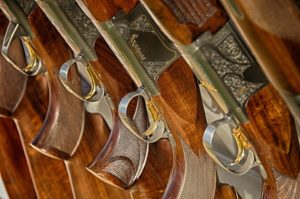 triggers-fair-warning-guns-467710_960_720