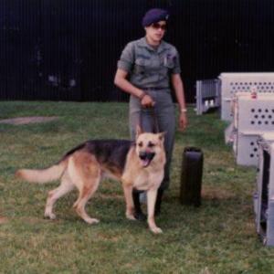 army dog 1980s