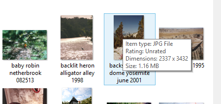 resize an image using outlook 1