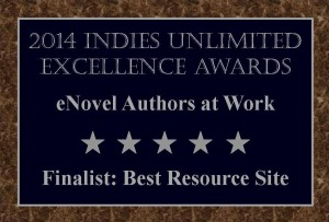 Finalists Plaque eNovel Authors at Work
