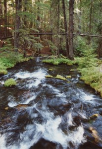 clearwater falls oregon june 2001 Flash fiction prompt ALL RIGHTS RESERVED KS BROOKS