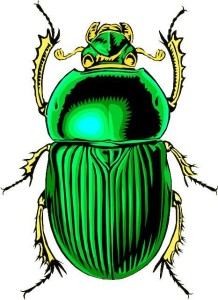 scarab beetle synchronicity in writing pixabay