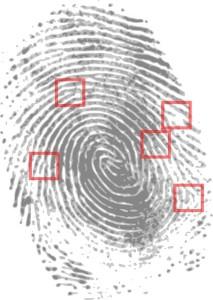 forensics for authors fingerprint-146242_640