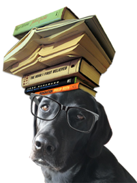 bookdoggy
