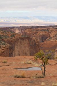 canyon de chelly scenery 01180017 flash fiction writing prompt copyright ksbrooks