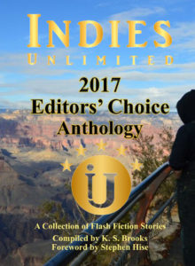 EBOOK COVER editors choice