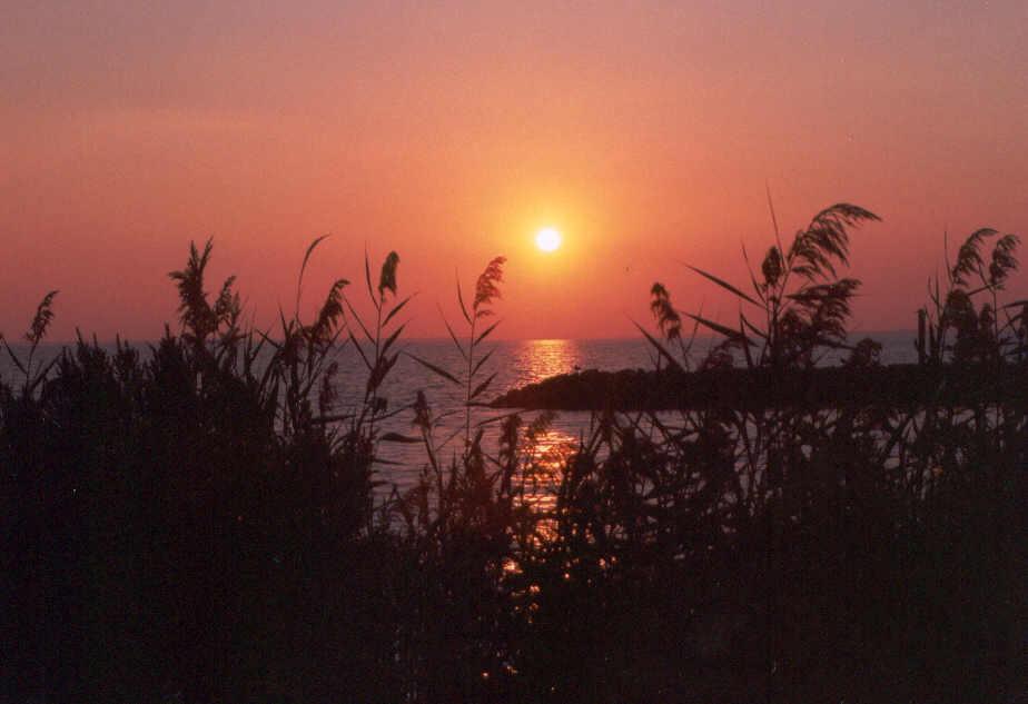 hoopers island sunset 090101