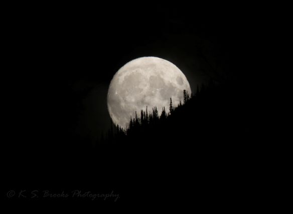 full moon rising 3L0A2469 flash fiction writing prompt copyright KS Brooks
