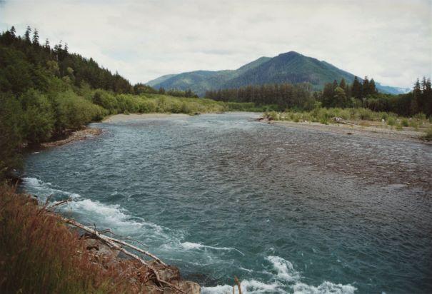 HOH river Olympic Natl Park WA june 2001 writing prompt copyright KS Brooks